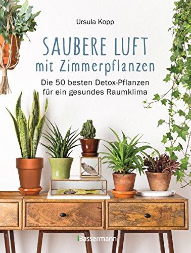 Saubere Luft mit Zimmerpflanzen: Die 50 besten Detox-Pflanzen für ein gesundes Raumklima. Basiert auf der NASA 'Clean Air Study'
